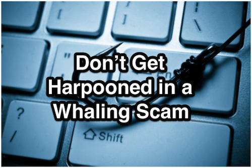 Don't Get Harpooned in a Whaling Scam