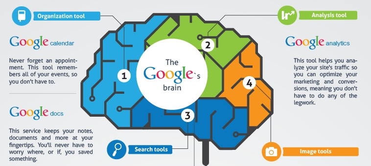 the google's brain