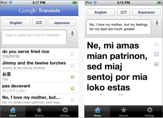 Google Translate Mobile App