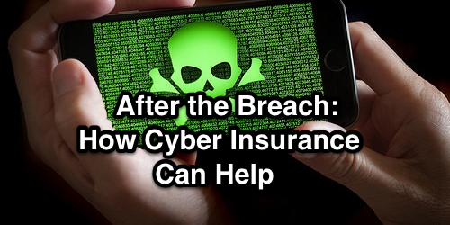 infographic cyber insurance